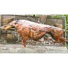 Wildfleisch-Grill-Überraschungspaket für 2-3 Personen (Göbel)